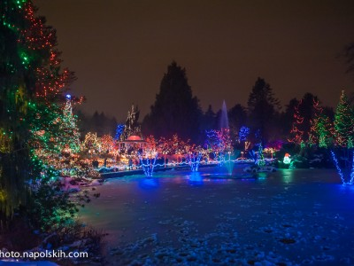 Festival of Lights at VanDusen Botanical Garden
